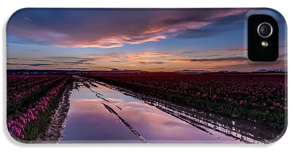 Tulips And Purple Skies IPhone 5 / 5s Case by Mike Reid