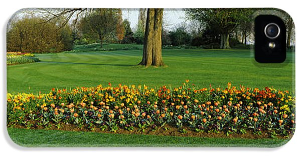 Tulips In Hyde Park, City IPhone 5 / 5s Case by Panoramic Images