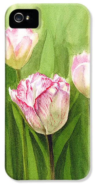 Tulips iPhone 5 Cases - Tulips in the Fog iPhone 5 Case by Irina Sztukowski