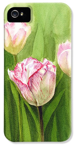 Tulips iPhone 5 Cases - Tulips in the Fog iPhone 5 Case by Irina Sztukowski