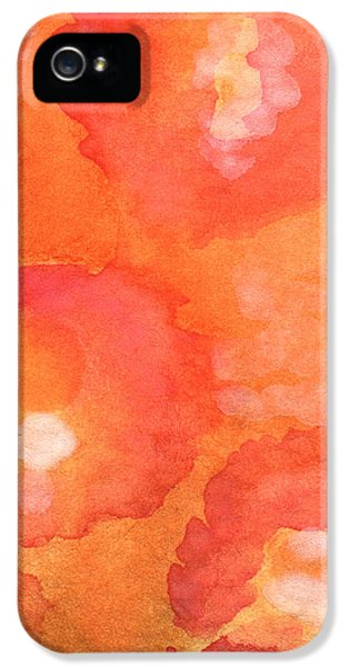 Flower iPhone 5 Cases - Tuscan Roses iPhone 5 Case by Linda Woods