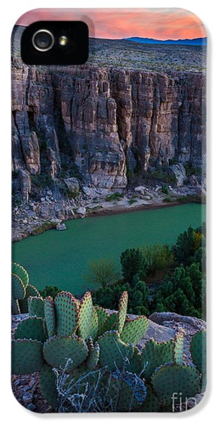Epic iPhone 5 Cases - Twilight Cactus iPhone 5 Case by Inge Johnsson