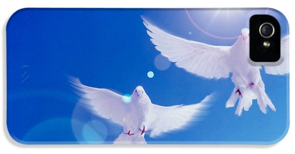Dove iPhone 5 Cases - Two Doves Side By Side With Wings iPhone 5 Case by Panoramic Images