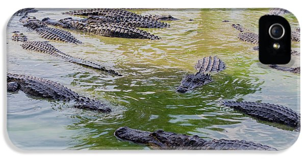 Usa, Florida, Ochopee IPhone 5 / 5s Case by Charles Crust