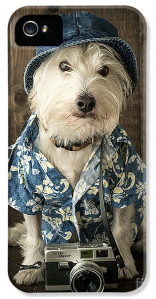 Clothing iPhone 5 Cases - Vacation Dog iPhone 5 Case by Edward Fielding