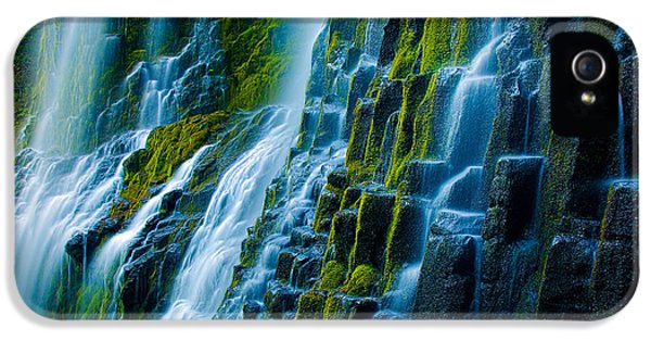 Ecology iPhone 5 Cases - Veiled Wall iPhone 5 Case by Inge Johnsson