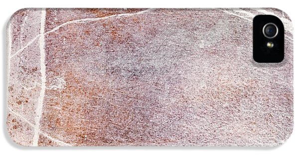 Veinal Spectrum IPhone 5 / 5s Case by Brett Pfister