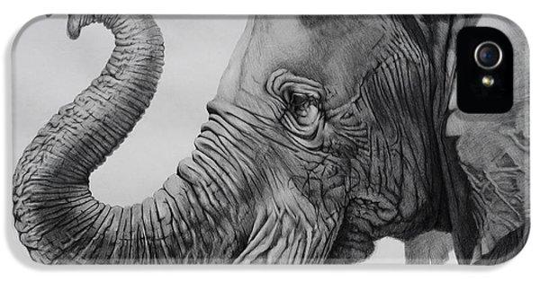 Pencil Drawing iPhone 5 Cases - Veteran iPhone 5 Case by Tim Dangaran