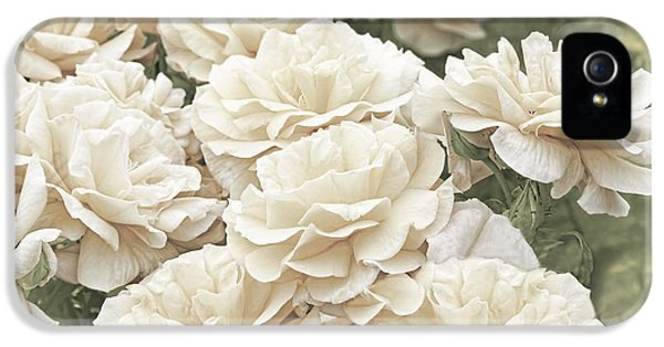 Ivory Flower iPhone 5 Cases - Victorian Roses in the Garden iPhone 5 Case by Jennie Marie Schell