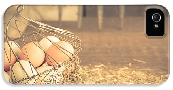 Agricultural iPhone 5 Cases - Vintage eggs in wire basket iPhone 5 Case by Edward Fielding