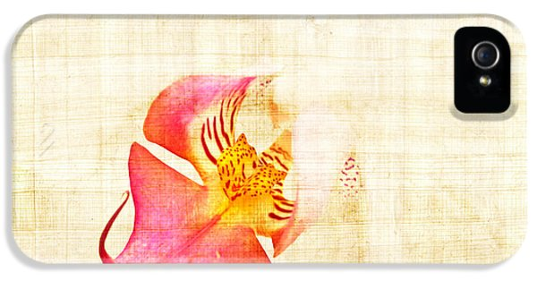Vintage White Orchid IPhone 5 / 5s Case by Delphimages Photo Creations