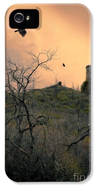 Circling iPhone 5 Cases - Vultures Circling by Castle iPhone 5 Case by Jill Battaglia