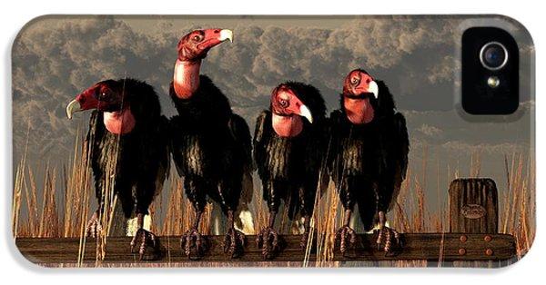 Bird Watcher iPhone 5 Cases - Vultures on a Fence iPhone 5 Case by Daniel Eskridge