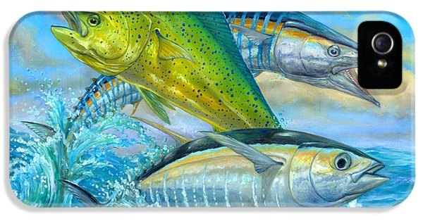 Wahoo Mahi Mahi And Tuna IPhone 5 / 5s Case by Terry  Fox