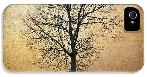 Spooky iPhone 5 Cases - Waltz of a tree iPhone 5 Case by Taylan Soyturk