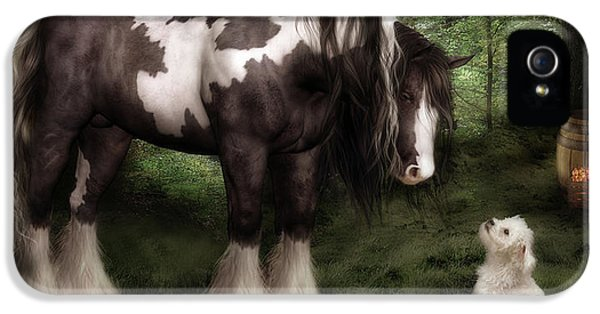 Original Art iPhone 5 Cases - Want to Play iPhone 5 Case by Shanina Conway