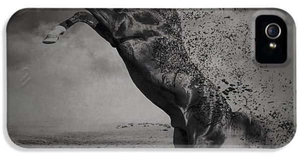 Arabian iPhone 5 Cases - War Horse iPhone 5 Case by Erik Brede