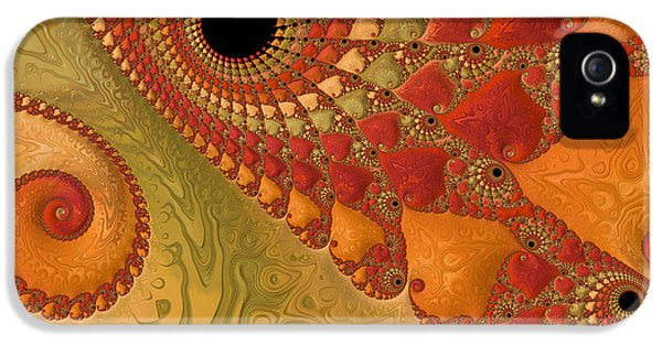 Asymmetrical iPhone 5 Cases - Warm And Earthy iPhone 5 Case by Heidi Smith