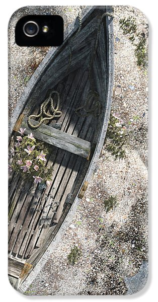 Ashore iPhone 5 Cases - Washed Ashore iPhone 5 Case by Cynthia Decker