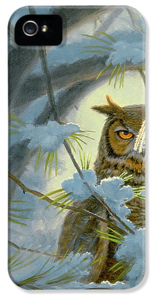 Horn iPhone 5 Cases - Watchful Eye-Owl iPhone 5 Case by Paul Krapf