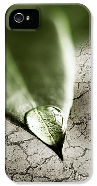 Water Drop On Green Leaf IPhone 5 / 5s Case by Elena Elisseeva