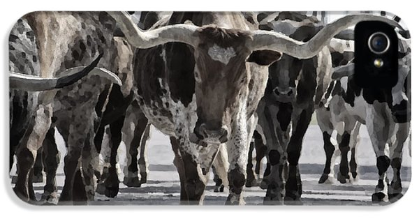 Us iPhone 5 Cases - Watercolor Longhorns iPhone 5 Case by Joan Carroll