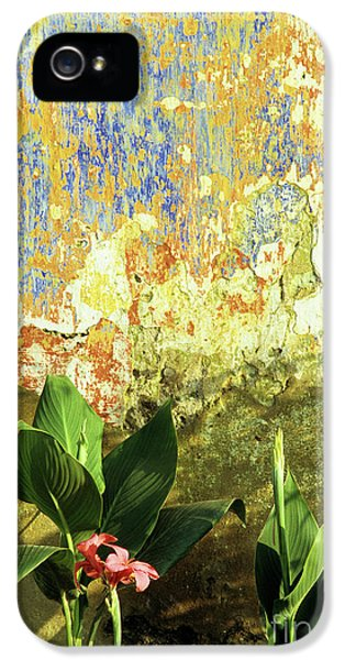 Vietnam Wall iPhone 5 Cases - Weathered Wall 01 iPhone 5 Case by Rick Piper Photography
