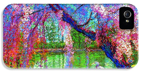 Colourful iPhone 5 Cases - Weeping Beauty iPhone 5 Case by Jane Small