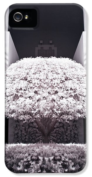 Infrared iPhone 5 Cases - Welcome Tree Infrared iPhone 5 Case by Adam Romanowicz