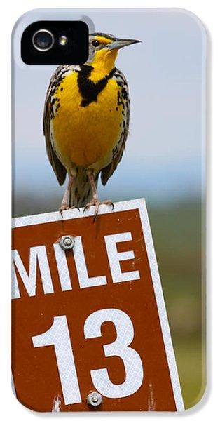 Western Meadowlark On The Mile 13 Sign IPhone 5 / 5s Case by Karon Melillo DeVega