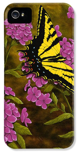 Swallowtail iPhone 5 Cases - Western Tiger Swallowtail and Evening Phlox iPhone 5 Case by Rick Bainbridge