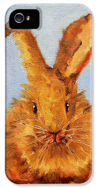 Bunny iPhone 5 Cases - Whats Up? iPhone 5 Case by Nancy Merkle