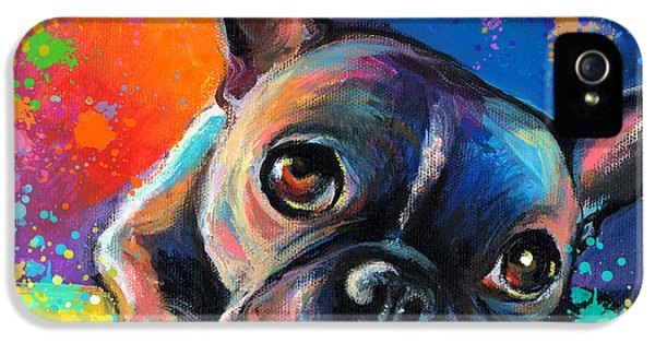 Greeting iPhone 5 Cases - Whimsical Colorful French Bulldog  iPhone 5 Case by Svetlana Novikova