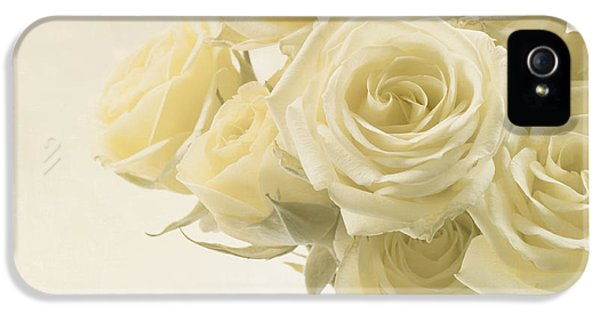 Ivory Rose iPhone 5 Cases - Whispers of Chiffon - Roses iPhone 5 Case by Kim Hojnacki