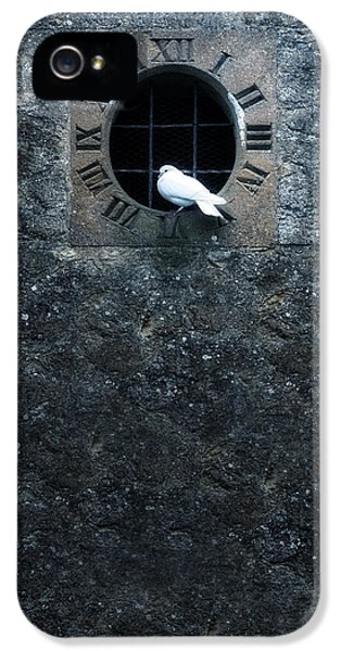 Clock iPhone 5 Cases - White Dove iPhone 5 Case by Joana Kruse