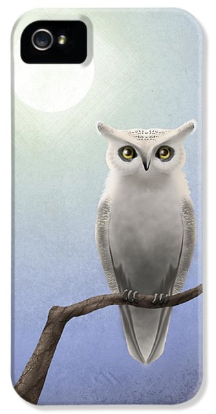 Owl iPhone 5 Cases - White Owl iPhone 5 Case by April Moen