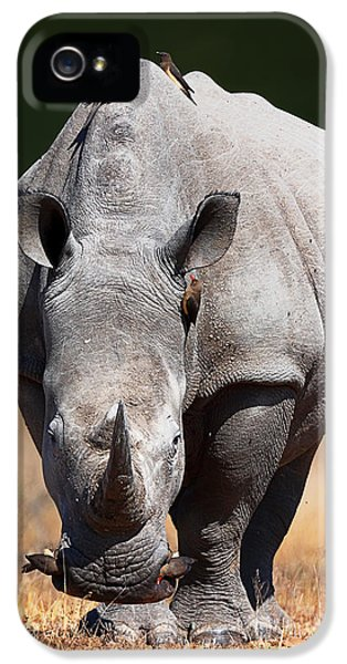 Look iPhone 5 Cases - White Rhinoceros  front view iPhone 5 Case by Johan Swanepoel