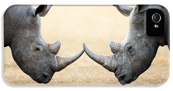 Challenge iPhone 5 Cases - White Rhinoceros  head to head iPhone 5 Case by Johan Swanepoel