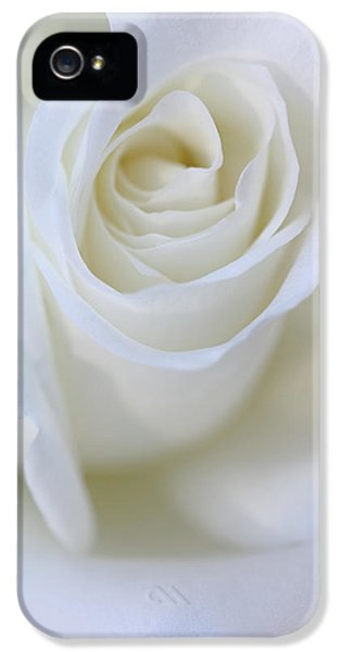 Ivory Rose iPhone 5 Cases - White Rose Floral Whispers iPhone 5 Case by Jennie Marie Schell