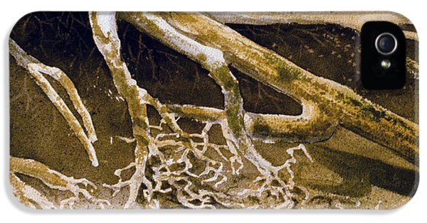 Raw Sienna iPhone 5 Cases - Whittier Root Patterns iPhone 5 Case by Teresa Ascone