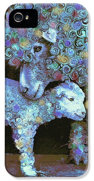 Ewe iPhone 5 Cases - Whose little lamb are you? iPhone 5 Case by Jane Schnetlage