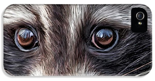 Wild Eyes - Raccoon IPhone 5 / 5s Case by Carol Cavalaris