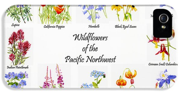 Forget Me Not iPhone 5 Cases - Wild Flowers of the Pacific Northwest Poster iPhone 5 Case by Sharon Freeman