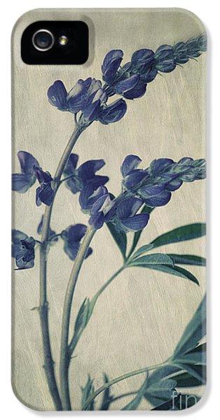 Blue Leaf iPhone 5 Cases - Wild Lupine iPhone 5 Case by Priska Wettstein