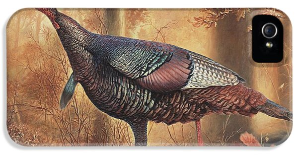 Wild Turkey IPhone 5 / 5s Case by Hans Droog