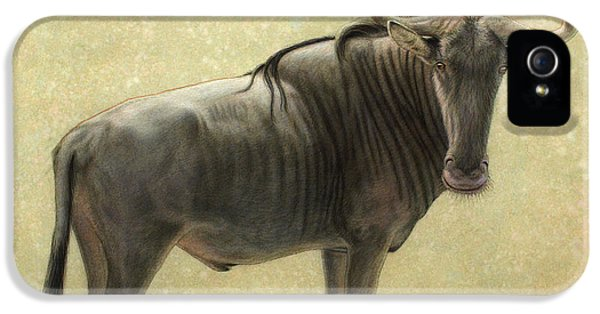 Bulls iPhone 5 Cases - Wildebeest iPhone 5 Case by James W Johnson