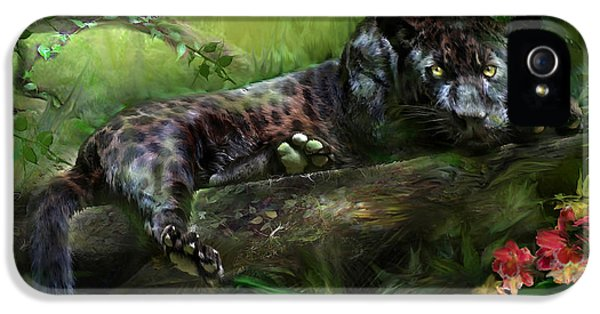 Wildeyes - Panther IPhone 5 / 5s Case by Carol Cavalaris