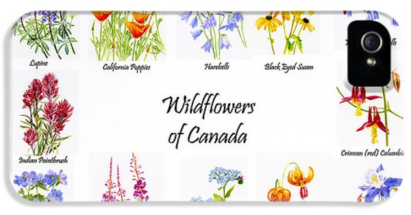 Wildflowers Of Canada Poster IPhone 5 / 5s Case by Sharon Freeman