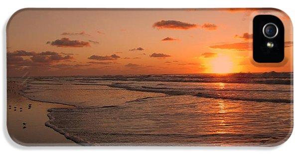 Wildwood Beach Sunrise II IPhone 5 / 5s Case by David Dehner