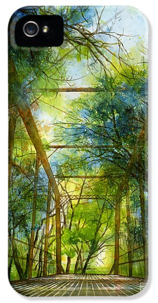 Blue Leaf iPhone 5 Cases - Willow Springs Road Bridge iPhone 5 Case by Hailey E Herrera
